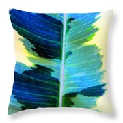 Marine Throw Pillow