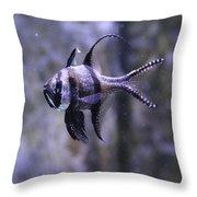 Marine Fish Throw Pillow
