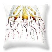 Marine Mollusc Divulging Fish Throw Pillow