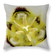 Mariposa Lily 3 Throw Pillow by Roger Snyder