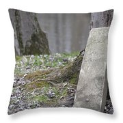 Marker Chained To Tree Throw Pillow