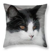 Marley Cat Meowning Throw Pillow