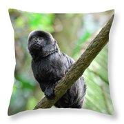 Marmoset Sitting On A Vine Throw Pillow