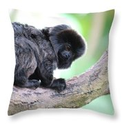 Marmoset Sitting Perched In A Tree Throw Pillow
