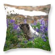 Marmot In The Wildflowers Throw Pillow