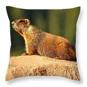 Marmot Life Throw Pillow