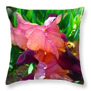 Maroon Iris Flower Throw Pillow