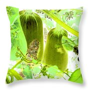 Marrow Mania Throw Pillow