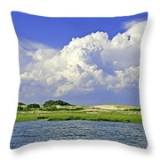 Marsh And Dunes Throw Pillow