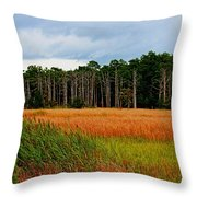 Marsh And Trees Throw Pillow
