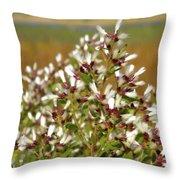 Marsh Blooms Throw Pillow