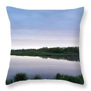 Marsh Calm Throw Pillow