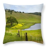 Marsh Creek Road Throw Pillow