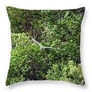 Marsh Hawk 3 Throw Pillow