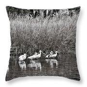Marsh Hunters Throw Pillow
