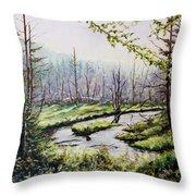 Marsh Lands Throw Pillow