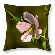 Marsh Mallow Throw Pillow