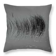 Marsh Reflection Throw Pillow