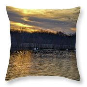 Marsh Ripple Pond Throw Pillow