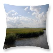 Marsh Scene Charleston Sc II Throw Pillow