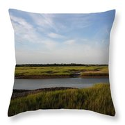 Marsh Scene Charleston Sc Throw Pillow