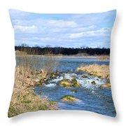Marsh Spill Way Throw Pillow