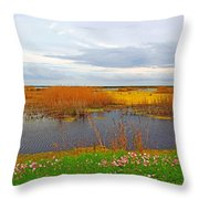 Marsh Spring Throw Pillow