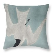 Marsh Tern Throw Pillow