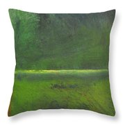 Marsh Throw Pillow