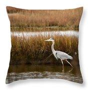 Marsh Wader Throw Pillow