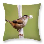 Marsh Wren Nest Building Throw Pillow