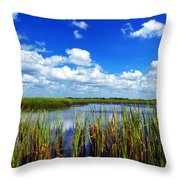 Marsh Lands Throw Pillow
