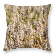 Marshes 3 Throw Pillow