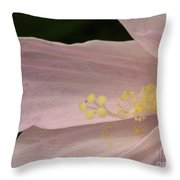 Marshmallow Throw Pillow by Priscilla Richardson