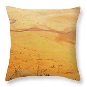 Martian River Throw Pillow