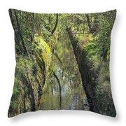 Marton West Beck Throw Pillow
