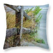 Marvel Of An Ordinary Fence Throw Pillow