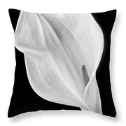 Marvelous Calla Lily In Black And White Throw Pillow