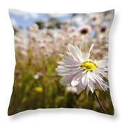 Marvelous Imperfection Throw Pillow