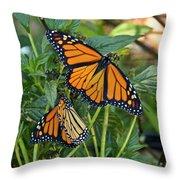 Marvelous Monarchs Throw Pillow