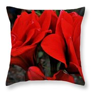 Mary M. Throw Pillow