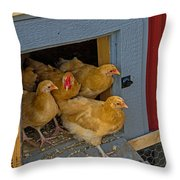Aunt Mary's Chickens Throw Pillow