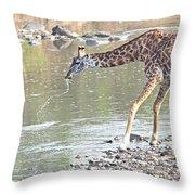 Masai Giraffe Drinking Throw Pillow