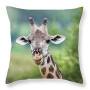 Masai Giraffe Portrait Throw Pillow