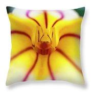 Masdevallia Orchid Throw Pillow