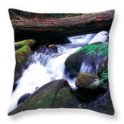 Mason Creek  Throw Pillow