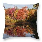Massachusetts Color Throw Pillow