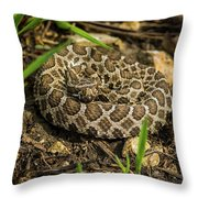 Massasauga Rattlesnake Throw Pillow