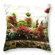 Massed Bromeliad In Hothouse Throw Pillow