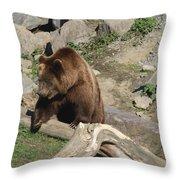 Master Bruin Throw Pillow